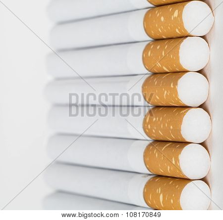 Close-up Group Cigarette Butts,