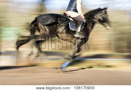 Galloping Dark Horse
