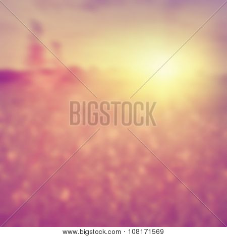 Blurred image of summer field at sunset.