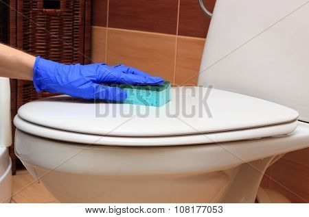 Hand Of Woman In Blue Glove Cleaning Toilet Bowl