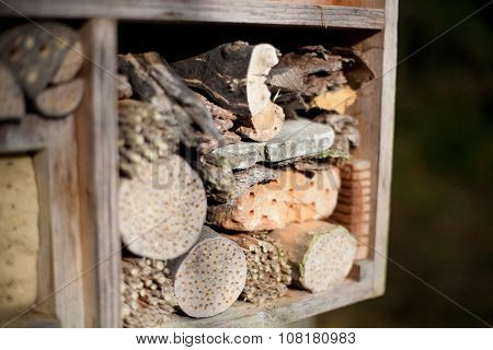 Insect House In A Forest