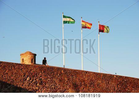 Flags on Malaga castle wall.