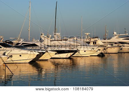 Boats in Puerto Banus harbour.