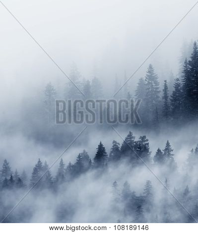Abstract Image Of The Majestic Mountains In The Fog