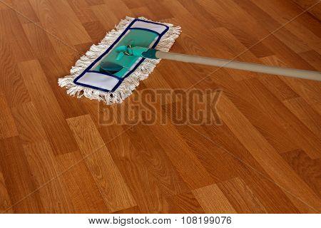 Mop On The Wood Floor