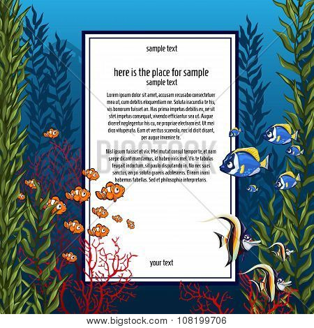 Marine life in bright colors and vertical card