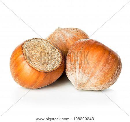 Hazelnuts close-up isolated on a white background.