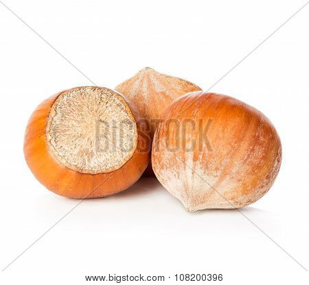 Hazelnuts close-up isolated on a white background.