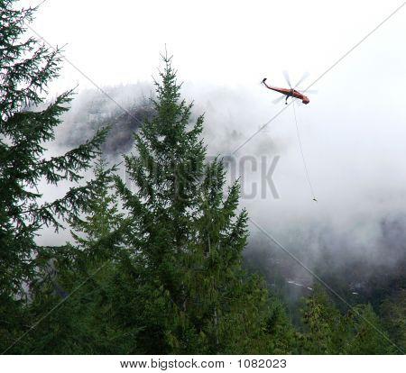 Mountain Logging