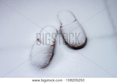 Slippers In Snow