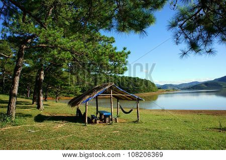 Dalat, Suoi Vang, Travel, Pine Forest, Ecotourism