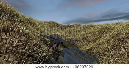 gigantoraptor walking in swamp water