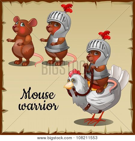 Mouse in steel armor on the chicken