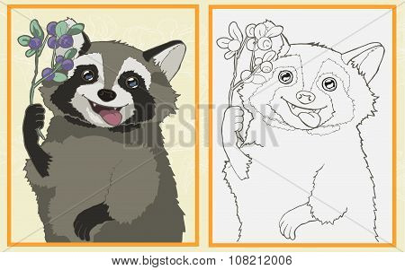 Raccoon with blueberries in the paws