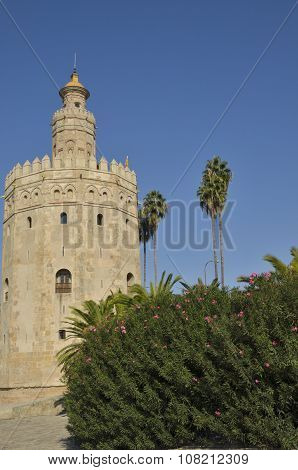 The Gold Tower Of Seville