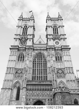 Black And White Westminster Abbey In London