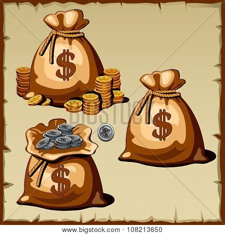 Set of bags with gold and silver coins