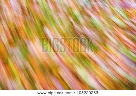 Spinning Rainbow