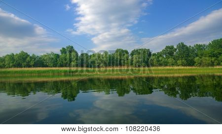 Summer reflection in the river
