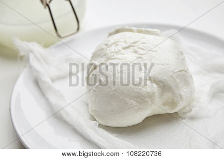 Close Up Fresh Buffalo Mozzarella In Front Of Jar With Brine