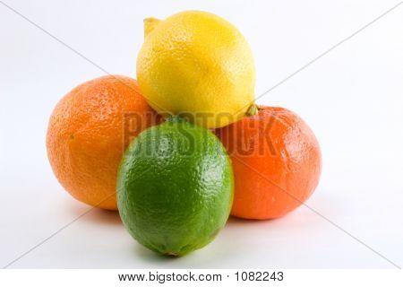 Citrus Pile Of Four