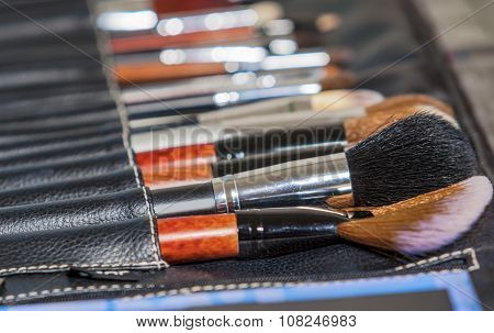 Beauty Concept And Ideas: Professional Set Of Multiple Makeup Paintbrushes Of Different Sizes  In On