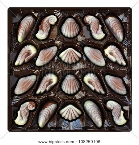 Chocolate Candies, Seashell And Seahorse Truffles, Artisanal Confections In A Box On A White Backgro