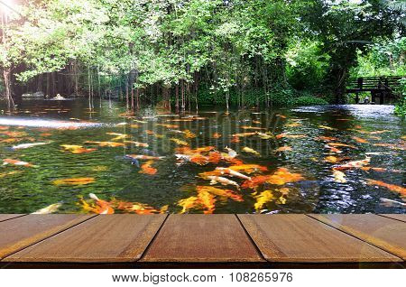 Perspective Wood View With Backyard Koi Fish Pond Background.