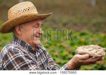 Cheerful old male worker with organic product