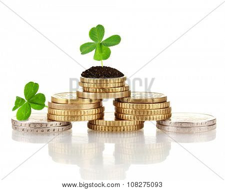 Clover leaf growing out on coins isolated on white