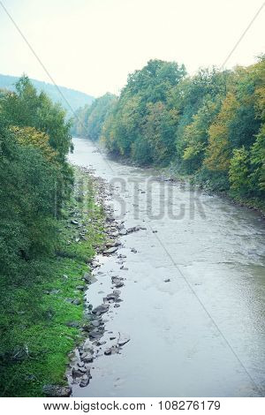 Mountain river flowing through forest