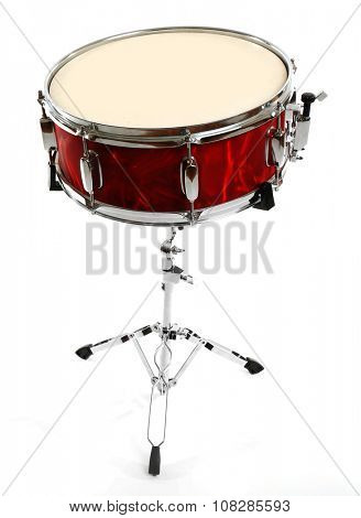 Red drum isolated on white background