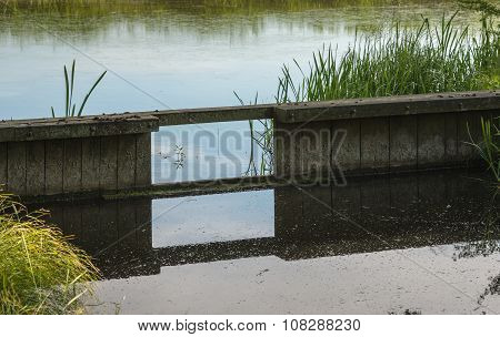 Wooden Weir In A Small Stream Reflected
