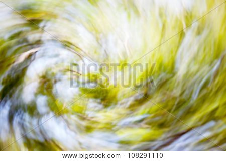 Blurred Photo Of Sunlight In The Green Forest In Spring Time.