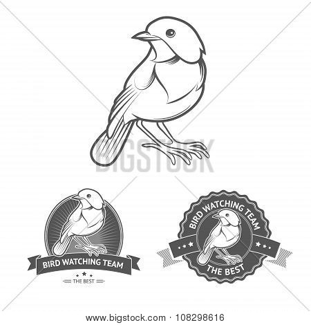 Vector Bird labels
