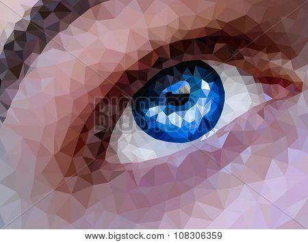 Polygonal blue eyes