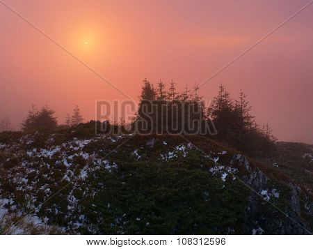 Landscape at sunset. First snow in mountains. Sunlight in Fog. Spruce trees on hill. Carpathians, Ukraine, Europe