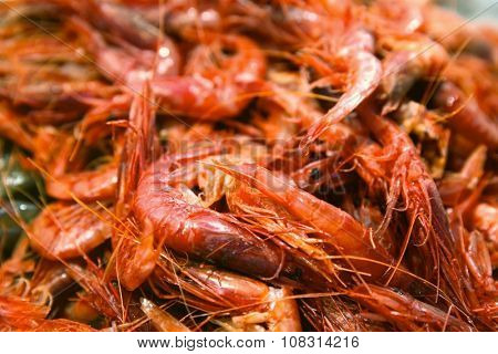 Freshly caught prawns sold at the fish market