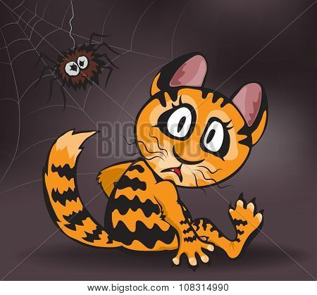 Ginger Cat And Spider