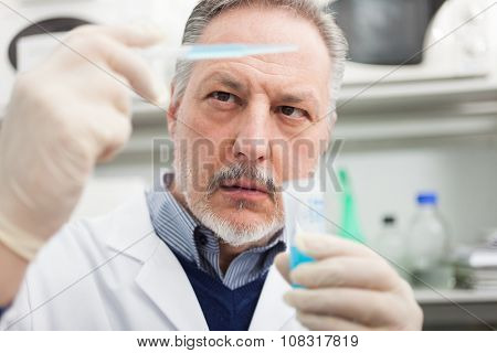 Scientist at work in his laboratory