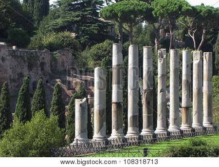 Remaining Pillars of The Temple of Venus and Rome