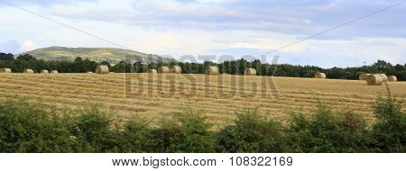 Beautiful field with straw bales in irish countryside