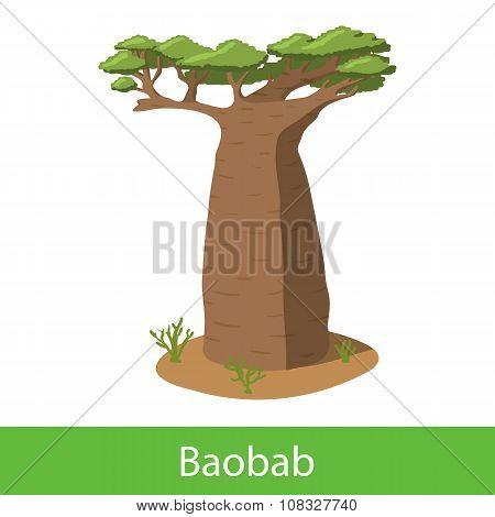 Baobab cartoon tree