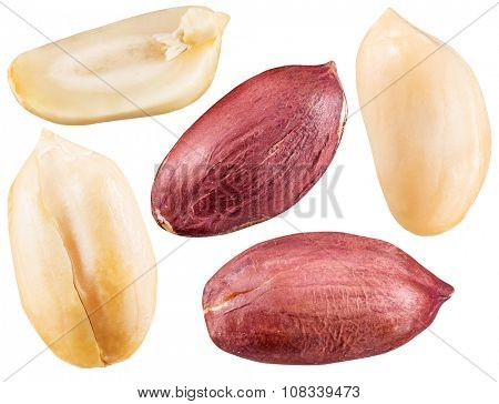 Peeled and opened peanuts. File contains clipping paths for each of nut.