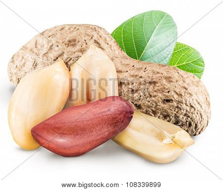 Peanuts with leaves. File contains clipping paths.