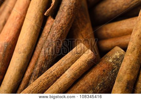 Cinnamon Sticks Filling Frame