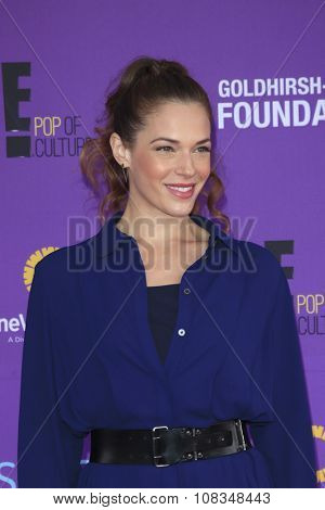 LOS ANGELES - NOV 15:  Amanda Righetti at the Express Yourself 2015 presented by P.S. ARTS at the Barker Hanger on November 15, 2015 in Santa Monica, CA