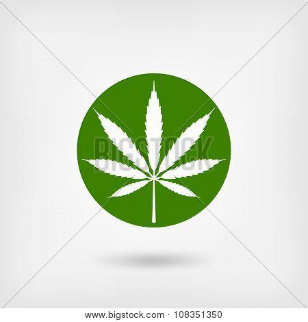 marijuana leaf in green circle. logo symbol