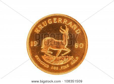 South African coin the gold Krugerrand showing the springbok