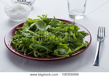 Rucola Salad On Red Plate
